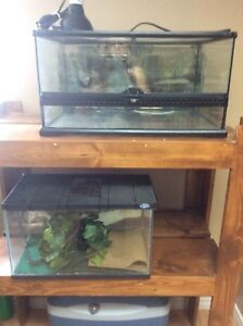 Reduced prices  Reptile tanks