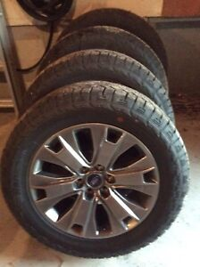 "FORD F150 SPECIAL EDITION 20"" WHEELS & TIRES"