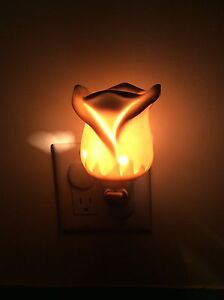 Rose plug-in Scentsy