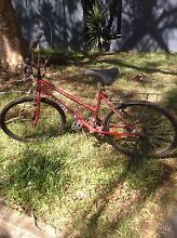 Red ladies mountain bike Bulimba Brisbane South East Preview