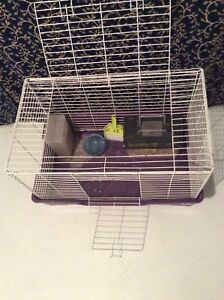 Animal Cage. $40 bird food & toys included