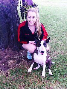 Dog walker Merriwa Wanneroo Area Preview