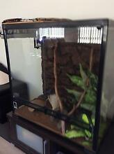 Stimpson Python and Reptile Tank and Accessories Broadbeach Waters Gold Coast City Preview