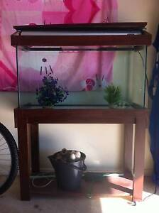 FISH TANK 3 FOOT ALL COMPLETE WITH PUMP HEAT STAND LIGHT Warner Pine Rivers Area Preview