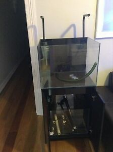 Marine aquarium Aqua one mini reef 120 Lilyfield Leichhardt Area Preview