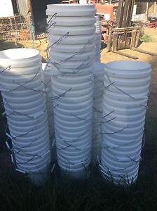Clean white buckets Glamorgan Vale Ipswich City Preview