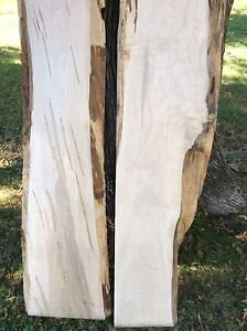 Live edge kiln dried curly maple boards