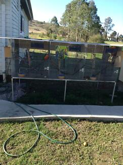 2 SUSPENDED AVAIRIES MANY EXTRAS Picton Wollondilly Area Preview