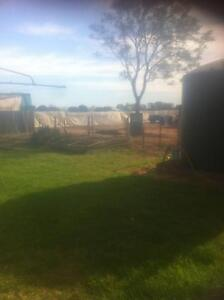 Wanted Balhanna- Home for Single Mature Gent/retired Tradesperson Angle Vale Playford Area Preview