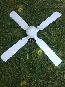 Ceiling Fan With Light Ormond Glen Eira Area Preview