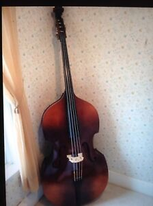 Full size upright bass