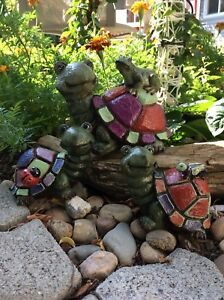 Turtle Family with Bugs!!!
