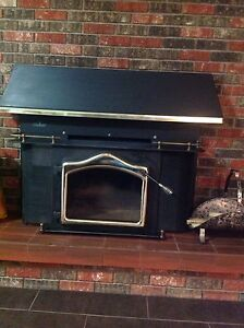 For Sale- Large Napoleon , wood, fireplace insert