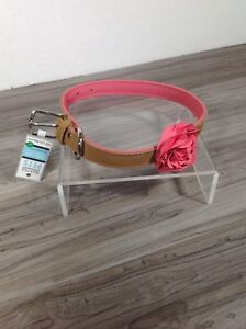 New with tags leather dog collar size L - box aa15
