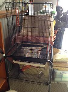Bird Cage Medium Shepparton East Shepparton City Preview