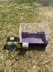 BIRD CAGE - $50 obo - Xl comes with toy & food