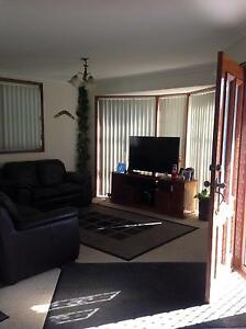 Nice spacious room in a beautiful Dee Why house, great location! Dee Why Manly Area Preview