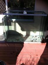 Fish/Aquarium/Reptile tanks Broadbeach Waters Gold Coast City Preview
