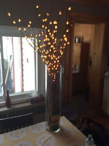Tall Glass Cylinder Vase,with Willow Electric Lights