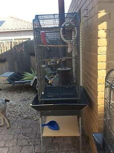Semi tame galah for sale includes cage Werribee Wyndham Area Preview