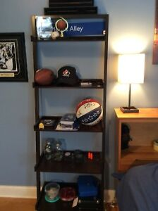 Free Standing ladder Shelf