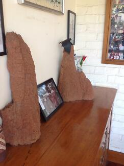Termite mounds (3) Riverview Lane Cove Area Preview