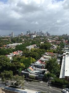 Great location & city views Waterloo Inner Sydney Preview
