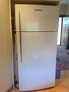 Fisher and Paykel 521 litre fridge Blacktown Blacktown Area Preview