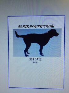 BLACK DOG TRUCKING