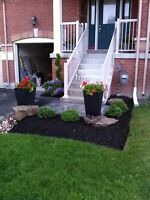 Spring clean and landscaping