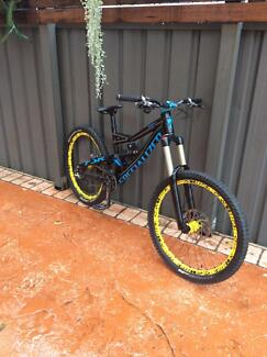 downhill bike, specialized status