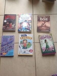 Brand new chapter books for sale