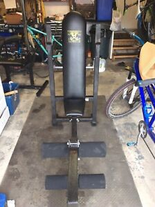 Northern Lights weight bench workout centre and Lat pulldown
