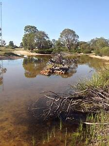 Caravan  Park Nature Based /Freehold and Business. Dongara Irwin Area Preview