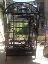 Large heavy duty bird cage Raceview Ipswich City Preview
