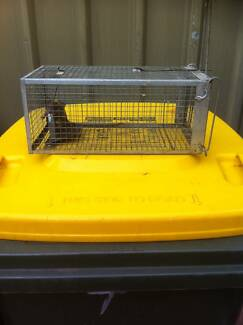 rat / mouse cage trap WANTED Salisbury East Salisbury Area Preview