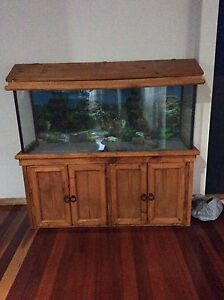 Fish tank Taree Greater Taree Area Preview