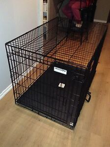 Precision dog cage with tray and dividers