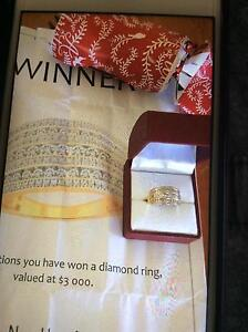 Ladies diamond ring Leeton Leeton Area Preview