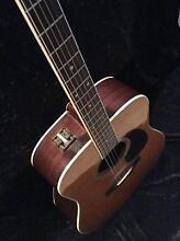 Takamine Guitar Salisbury Area Preview