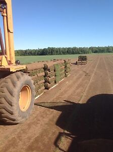 Farm Fresh Kentucky Blue grass rolls 720 sq ft SKID direct farm