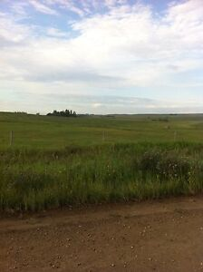 9+ acres of bare land