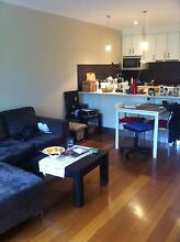 room for rent Oakleigh South Monash Area Preview