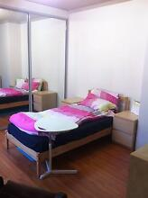 Strathfield, 1 master room looking for 1 female flatmate Strathfield Strathfield Area Preview