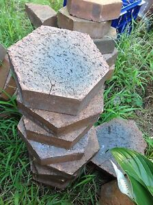 Pavers hexagonal shape Coogee Eastern Suburbs Preview