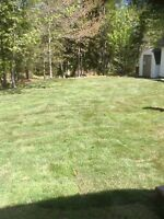 Sod Installation Specialists