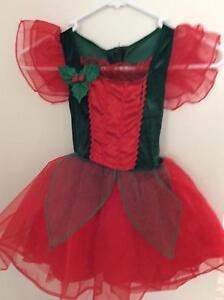 Girls Christmas Dress size 2-3 Kurri Kurri Cessnock Area Preview