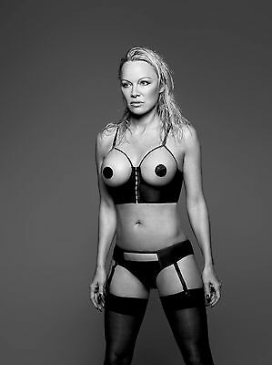 5 x Pamela Anderson A4 photos #2