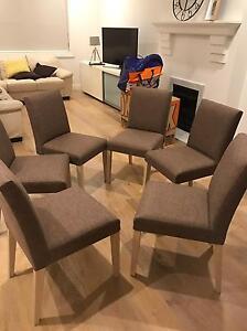 6x Dining chairs (North Bondi) Bondi Eastern Suburbs Preview