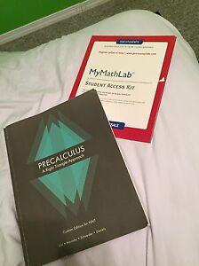 Precalculus a right triangle approach